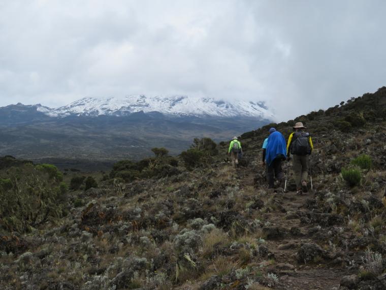 Tanzania Mount Kilimanjaro, Shira Cathedral, Heading north of Shira Cathedral, Walkopedia