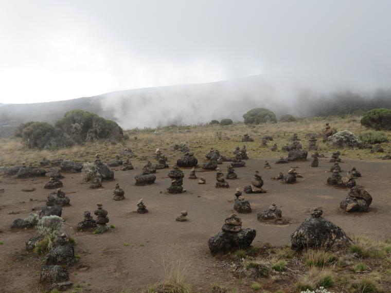 Tanzania Mount Kilimanjaro, Shira Cathedral, , Walkopedia