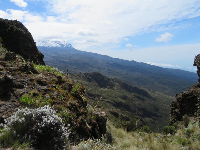 Tanzania Mount Kilimanjaro, Shira Cathedral, Looking along southern Kili slopes from Shira Cathedral walk, Walkopedia