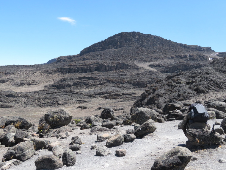 Tanzania Mount Kilimanjaro, Lava Tower,  Lava Tower trail, Walkopedia