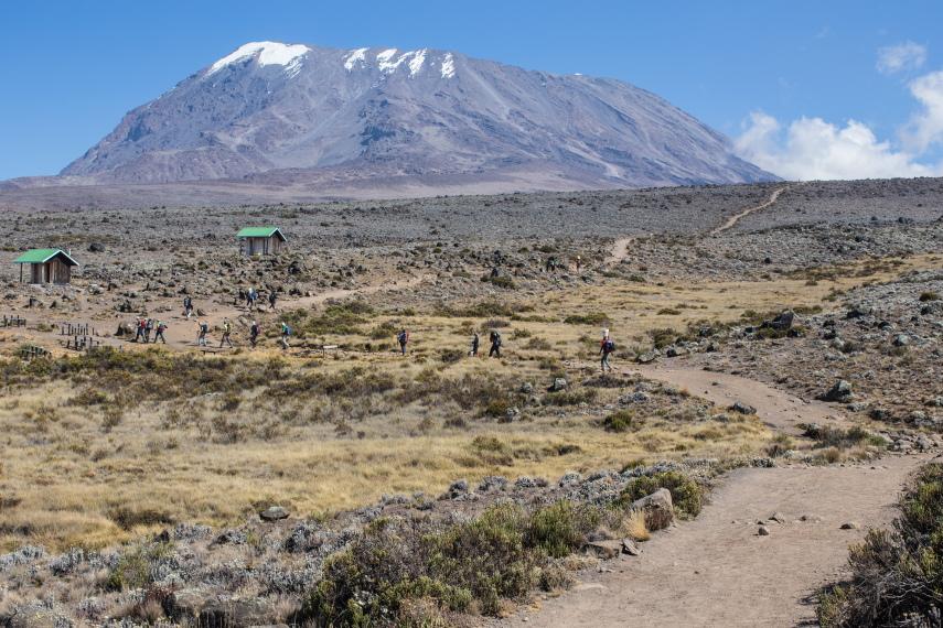 Tanzania Mount Kilimanjaro, Marangu Route , Ascent to Kibo huts, Walkopedia