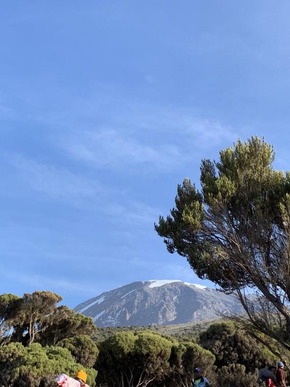 Tanzania Mount Kilimanjaro, Machame Route, , Walkopedia