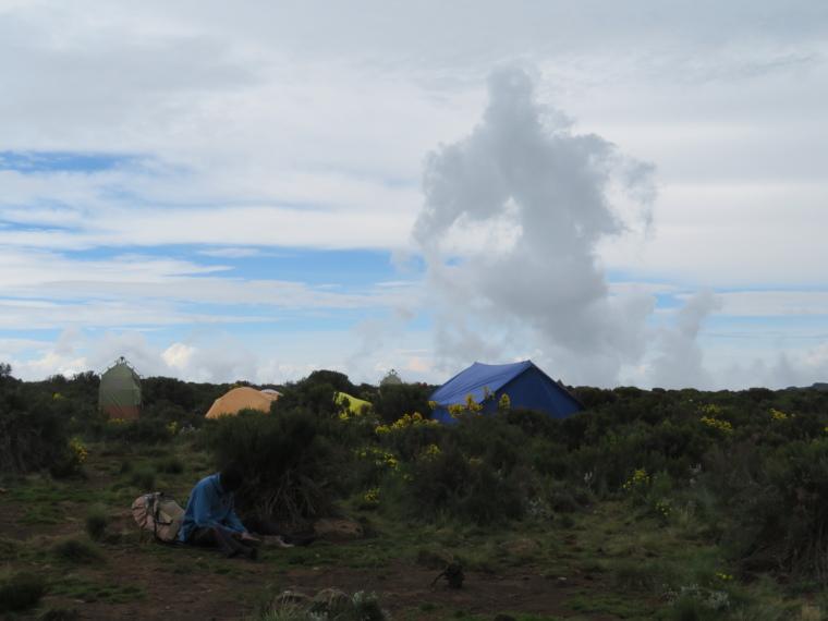 Lemosho and Shira Routes  : Shira 1 camp - © William Mackesy