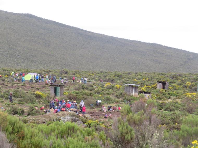 Lemosho and Shira Routes  : Striking Shira 1 camp - © William Mackesy