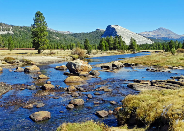 Tuolunme Meadows Area : Tuolumne River and Meadows - © Flickr user Don Graham