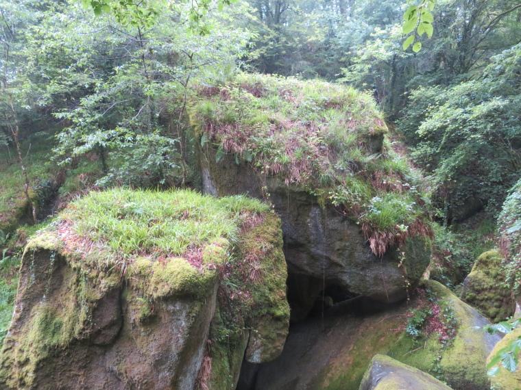 Brittany: Huelgoat forest - © William Mackesy