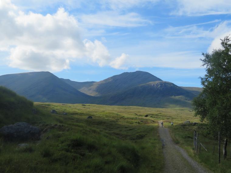 United Kingdom Scotland SW Highlands, Bridge of Orchy to Kingshouse, Rannoch Moor, Perfect walking on upper fringe of Rannock Moor, Walkopedia