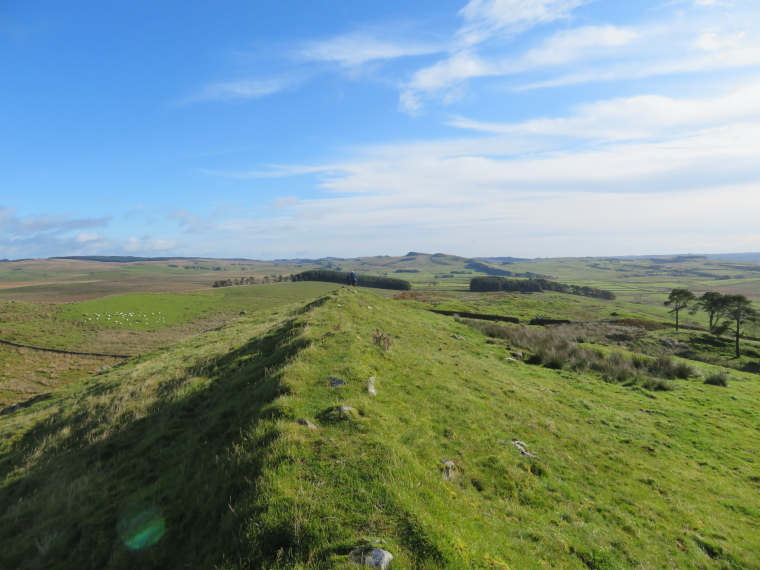 Cawfields to Birdoswald: Huge country, looking east fm west of Great Chesters fort - © William Mackesy