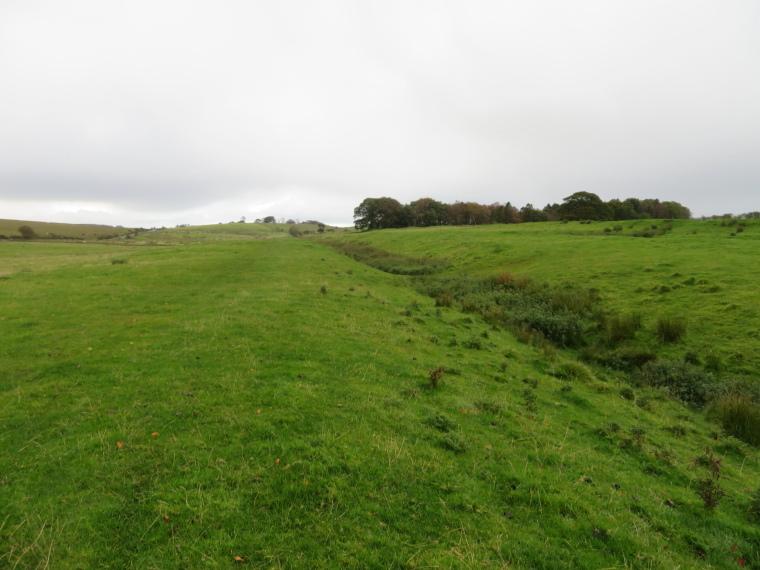United Kingdom England Hadrian's Wall, Cawfields to Birdoswald,  West of Birdoswald, Walkopedia