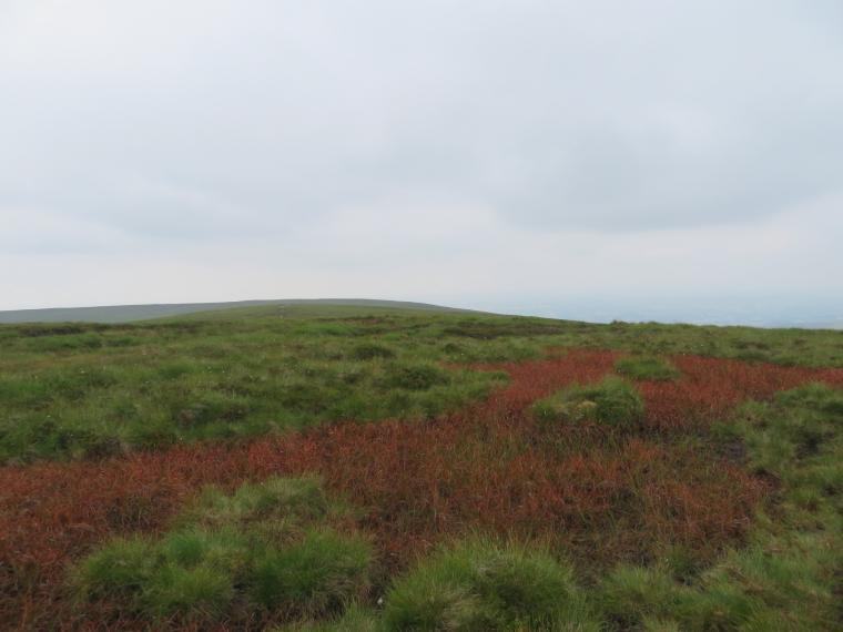 United Kingdom Wales Black Mountains, Black Hill Ridge, Hatterrall ridge colours, Walkopedia