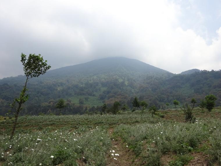 Rwanda, Virunga Mountains, Mount Bisoke, Walkopedia