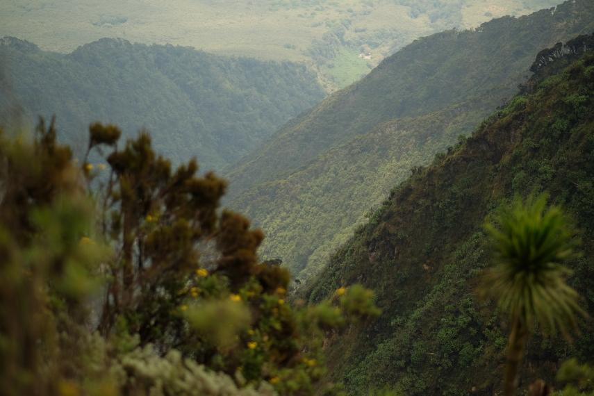 Rwanda, Virunga Mountains, Mt Sabyinyo, Walkopedia