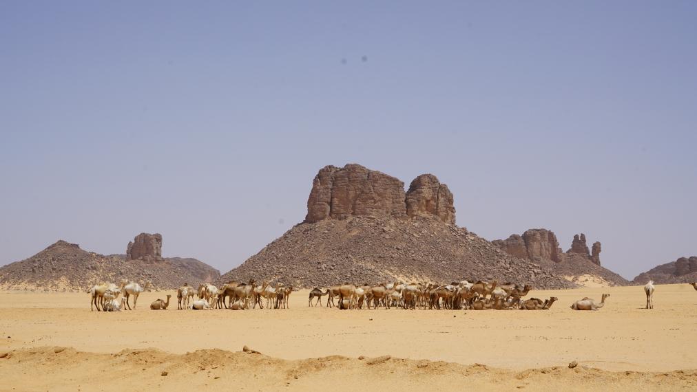 Algeria, Tassili N Ajjer, Tassili N'Ajjer National Park, Walkopedia