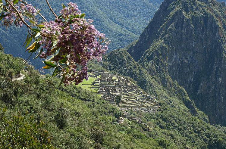 View of Machu Picchu From the Inca Trail - © From Flickr user LatinAmericaForLess