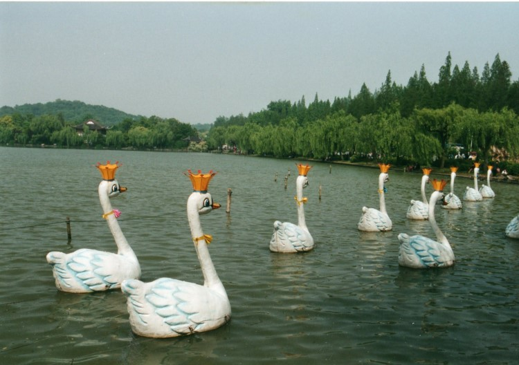 West Lake, Hangzhou - © Copyright William Mackesy
