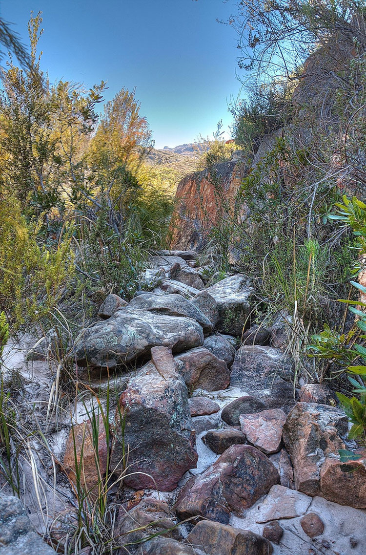 Cederberg Path - © By Flickr user malcolmcerfo