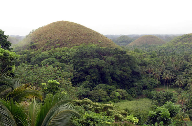 Chocolate Hills - © By Flickr user RobertoVerzo