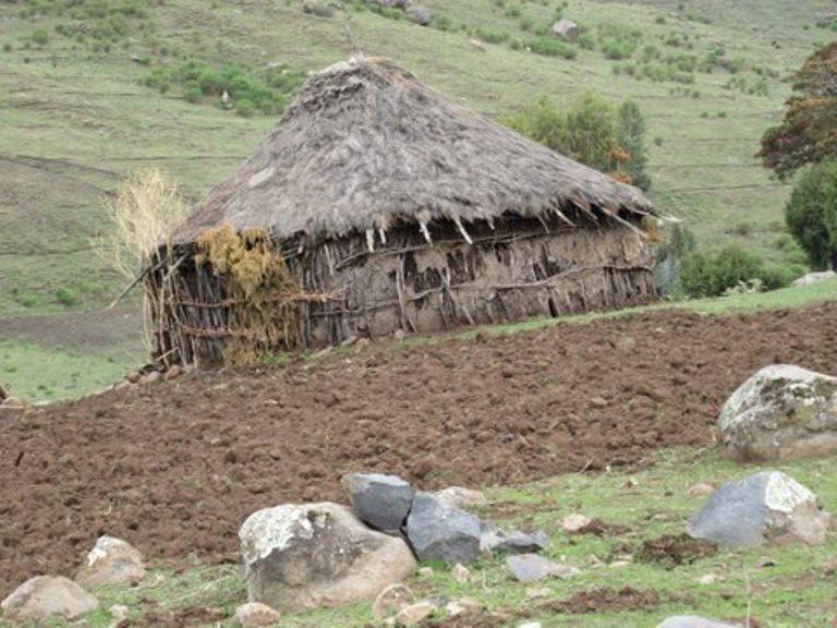 Bale Mountains: Ethiopian Farm - © John Aird