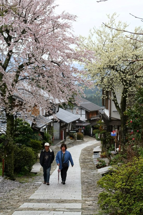 Nakasendo Way: Cherry blossom in Magome - © Walk Japan