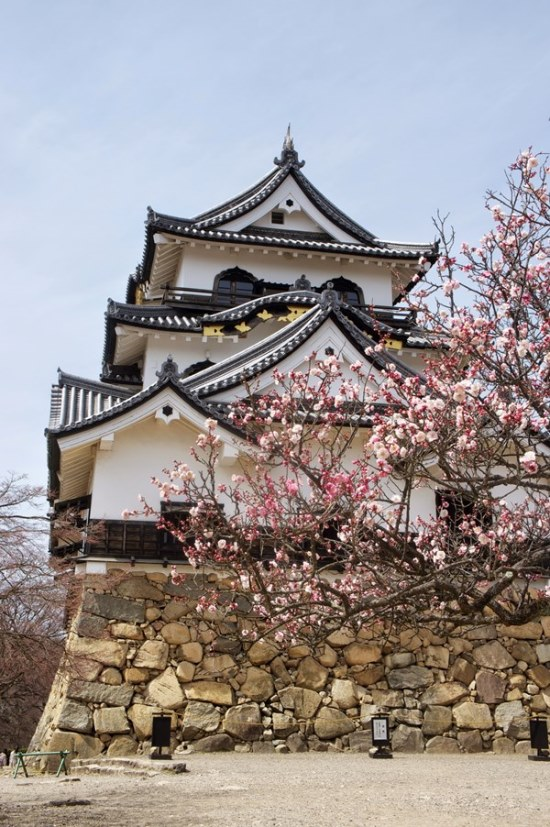 Nakasendo Way: Hikone castle - © Walk Japan