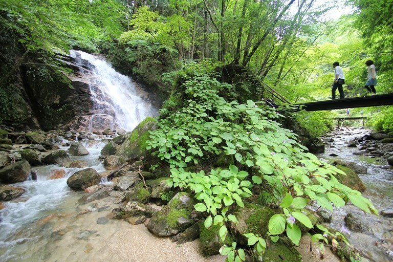 On the way to O-tsumago, Kiso Valley - © Walk Japan...