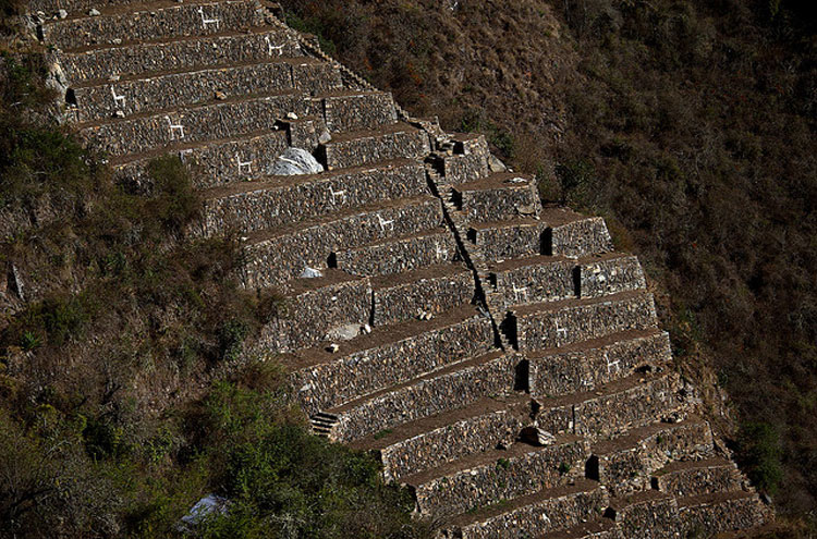White Llama Terraces - © From Flickr user Roubicek