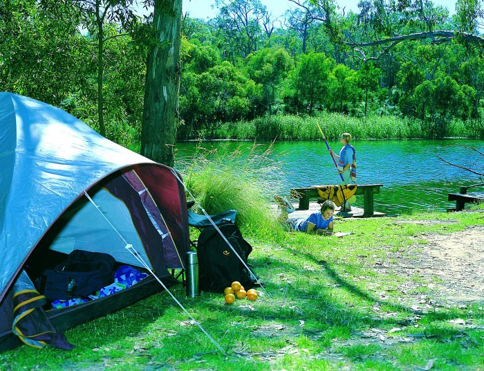 Campsite on the Glenelg river