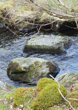 Stepping Stones - © Kelly Drewett