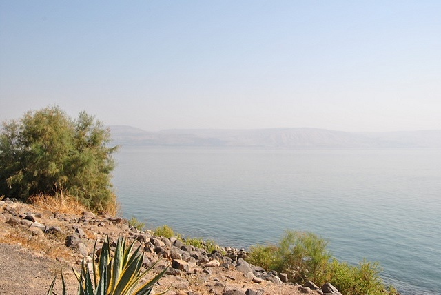 Jesus Trail: Jesus Trail - Sea of Galilee near Capernaum - © Copyright Flickr user Christyn