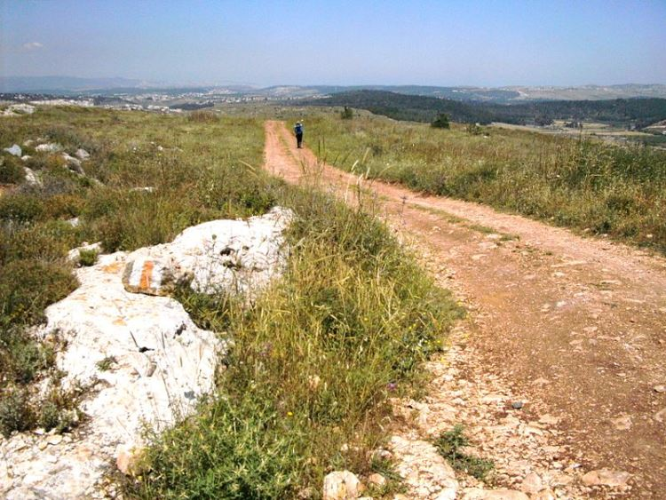Jesus Trail: Jesus Trail - near Nazareth - © Copyright Wikimedia Commons, Zeromancer44