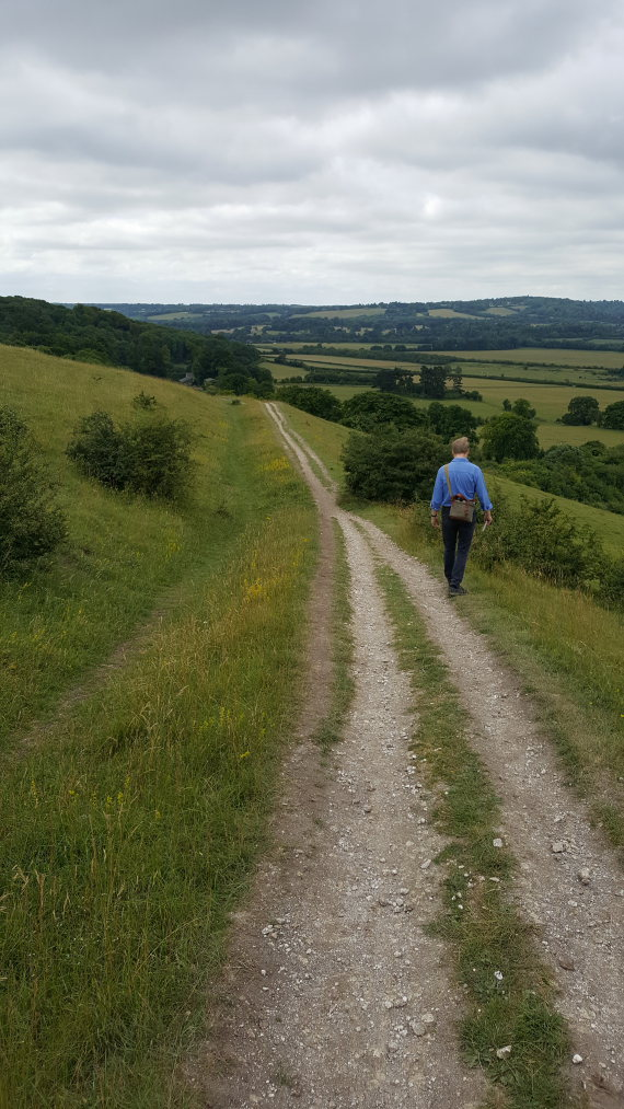 The Ridgeway: Pitstone Hill flank - © William Mackesy