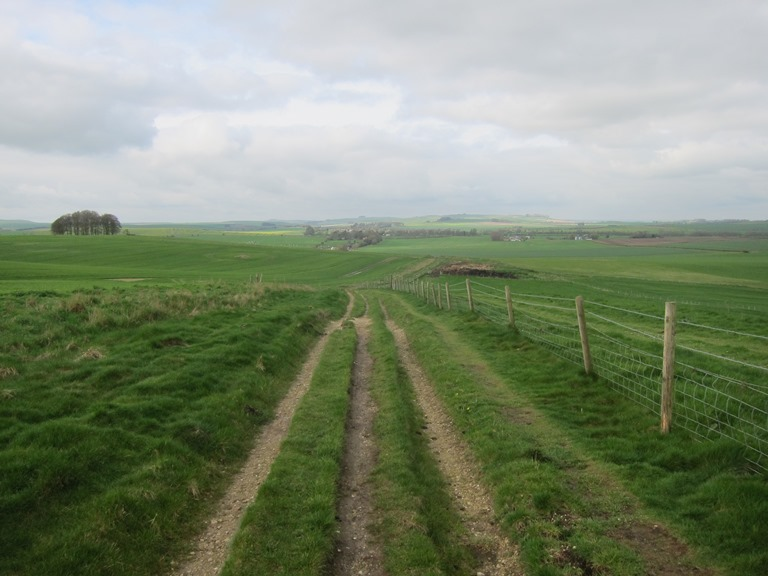 The Ridgeway: Ascending above Avebury - © William Mackesy