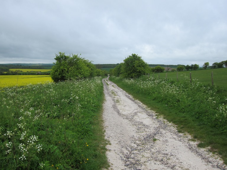 "The Ridgeway: Getting chalky, East of Wayland""s Smithy - © William Mackesy"