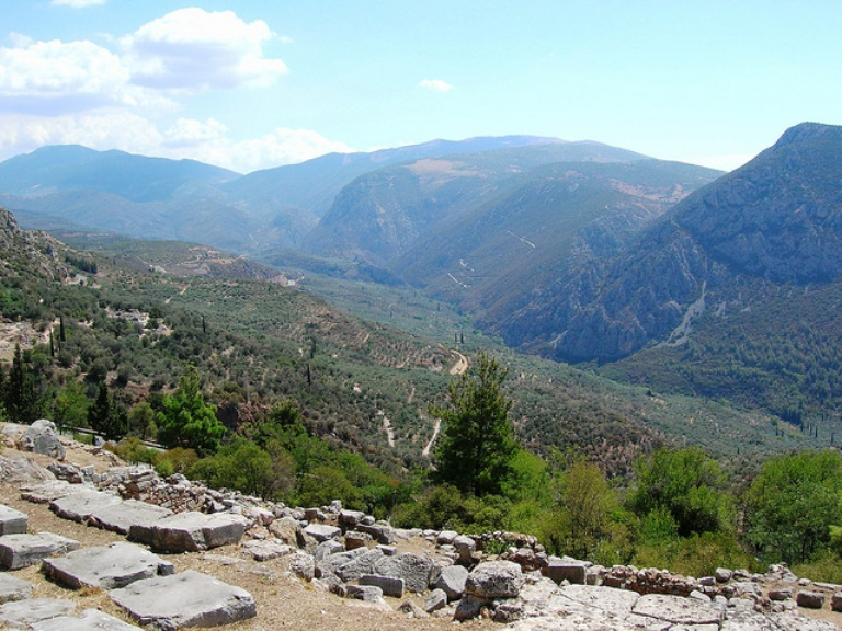 olive groves on mt parnassus - ©  flickr user olderock1