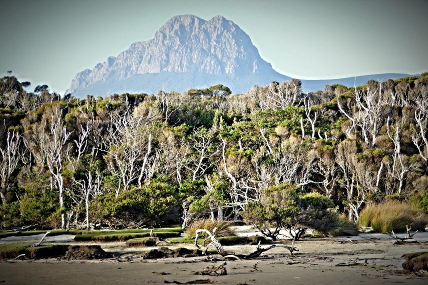 Australia Tasmania, South Coast Track, South Coast Track, Walkopedia