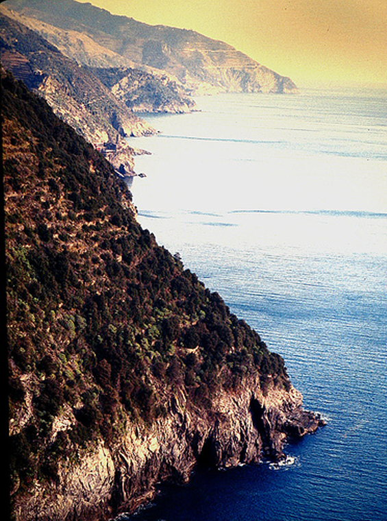 Cinque Terre - Coast - © By Flickr User pizzodisevo