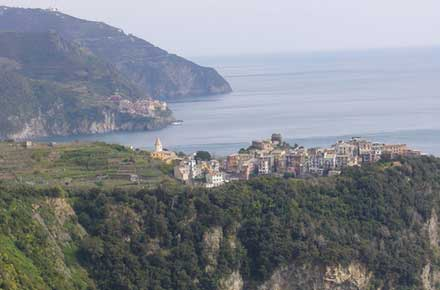 Cinque Terre -  Corniglia From Upper Trail - © By Flickr User WiggyToo