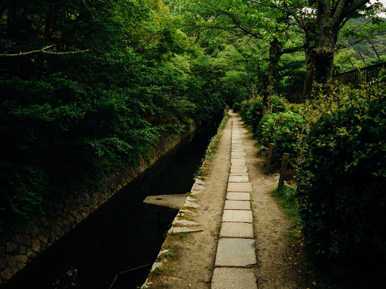 Daimonji-yama and Philosopher's Path, Kyoto: © Tim Brennan flickr user