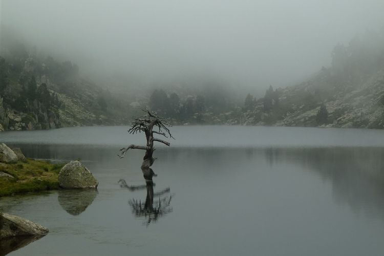 Estany de Baciver (2120m) - 24082013 - © Dick Everard