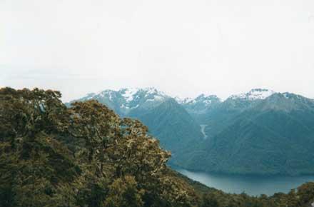 New Zealand South Island, Kepler Trail, Kepler Trail - , Walkopedia