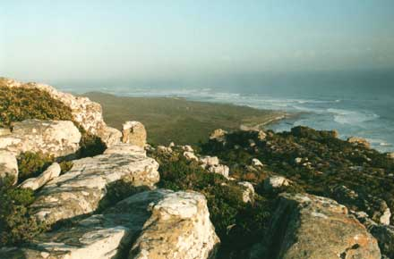 Cape of Good Hope: Cape of Good Hope -  - © William Mackesy