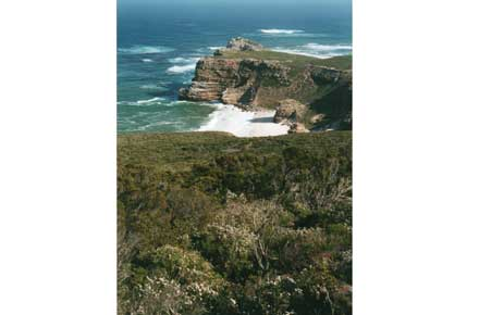 Cape of Good Hope: The real Cape    - © William Mackesy