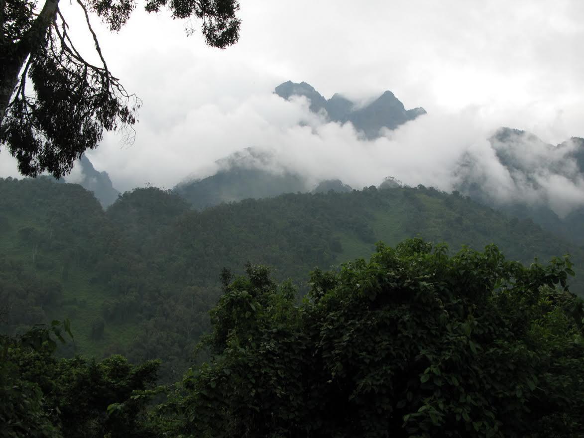 Peaks from Nyabitaba - © Charles Bookman