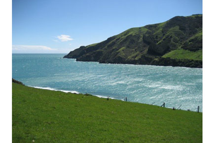 Cable Bay Walkway -  - © William Mackesy