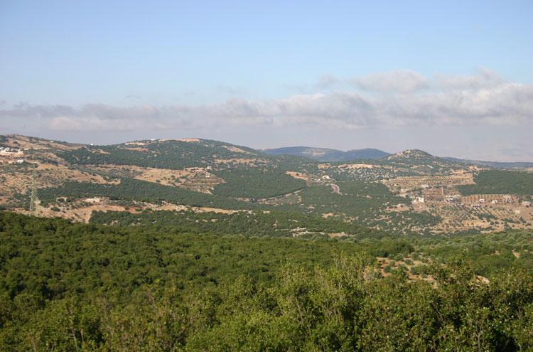 Jordan, Ajloun Woodland Reserve, Toward Mar Elias - by William Mackesy, Walkopedia