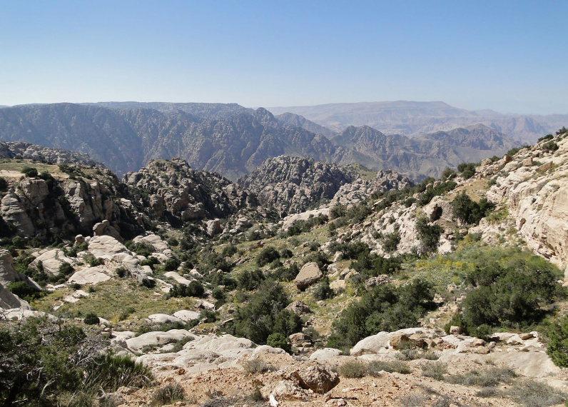 Dana Area: Dana Reserve 1 - © wiki user Bernard Gagnon