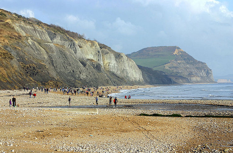 Fossil hunting, Charmouth - © from Flickr user Kevinzim