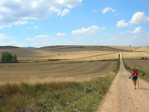 Camino Frances - © By Flickr user Freecat