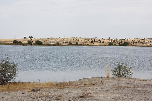 Caceres Inland Beach - © By Flickr user Cotallo-Nonocot