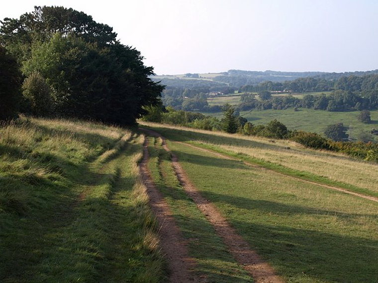 Cotswold Way: Cotswold Way, Leckhampton Hill  - © wiki user Derek Harper